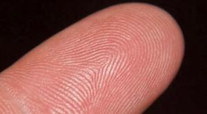 elid-finger-print-01